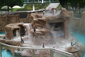 東山動物園に伺いました