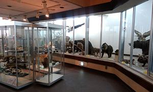 動物飼料展示館