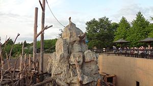 夕暮れの動物園撮影教室